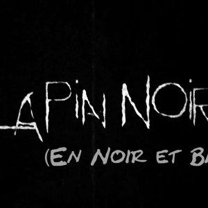 Lapin Noir (Version Noir et blanc)