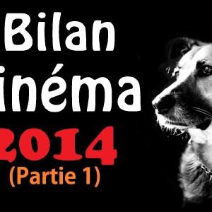Bilan Cinéma 2014 – Partie 1